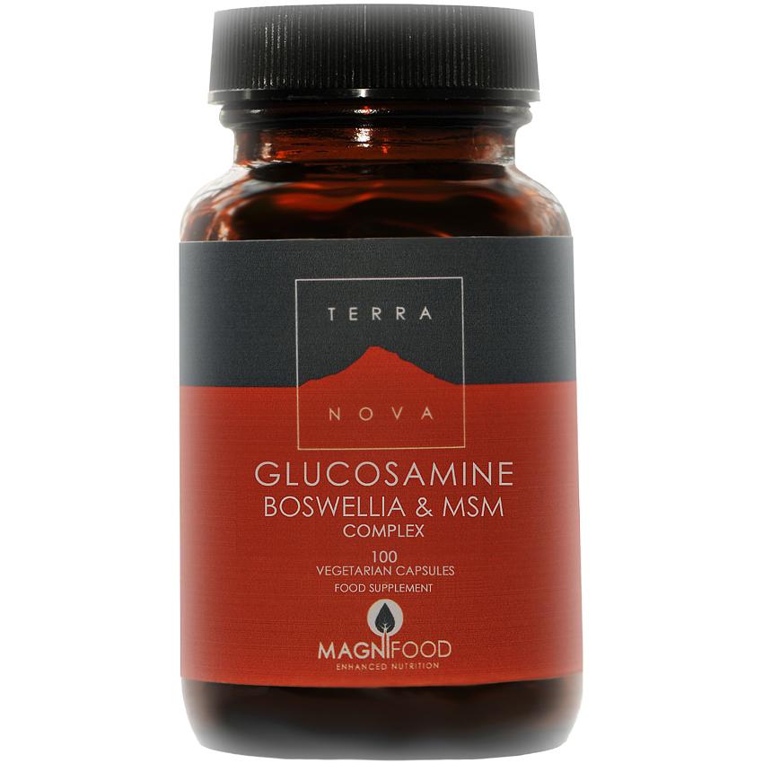 TERRANOVA Glucosamine Boswellia & ΜSM Joint Support Complex 100 veg. Caps