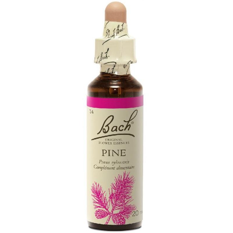 BACH Pine- Ανθοΐαμα Πεύκη η Aγρία No24 - 20ml