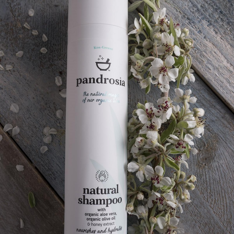 PANDROSIA Natural Shampoo - 250ml