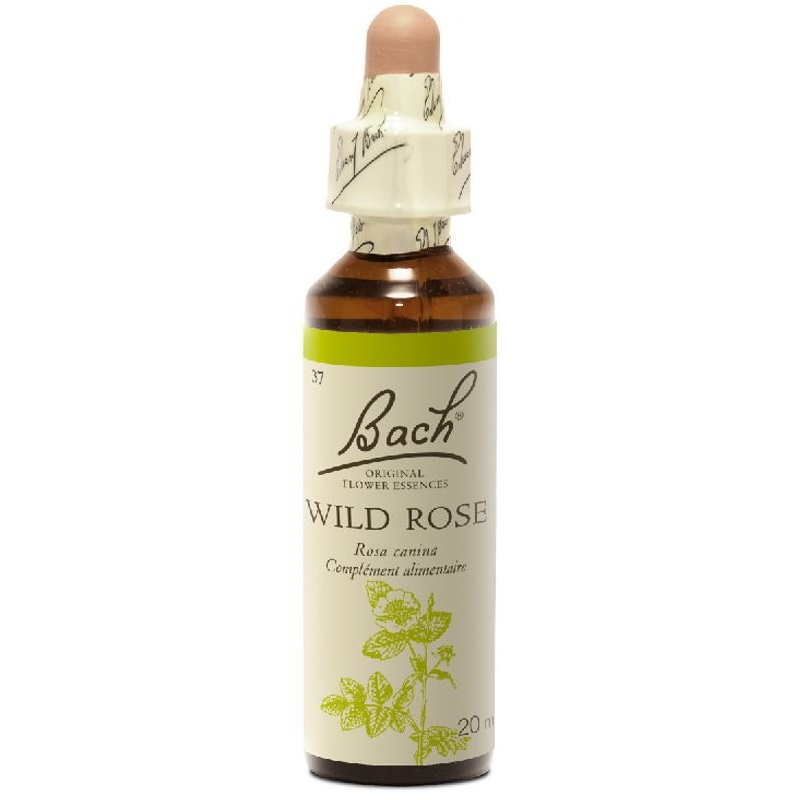 BACH Wild Rose- Ανθοΐαμα Αγριοτριανταφυλλιά No37 - 20ml