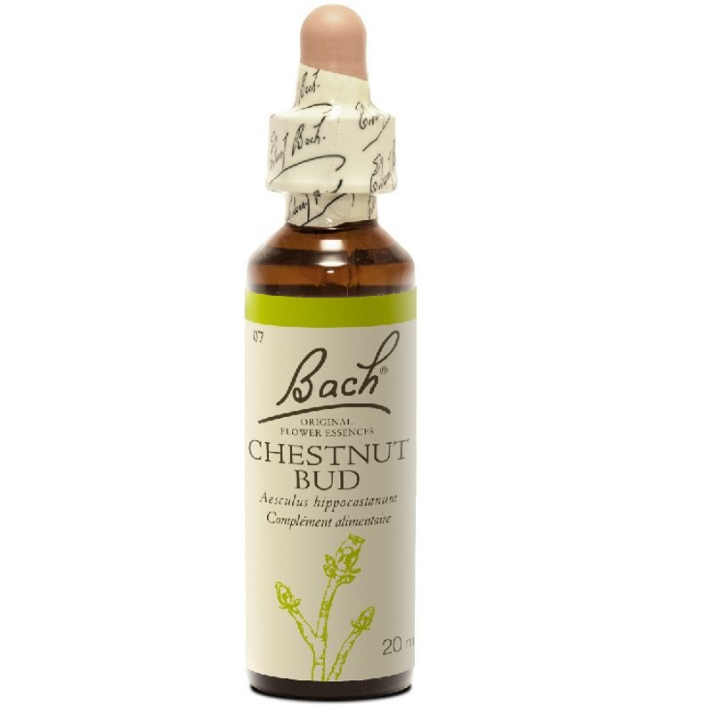 BACH Chestnut Bud -Ανθοΐαμα Μάτι αγριοκαστανιάς Νο7 - 20ml