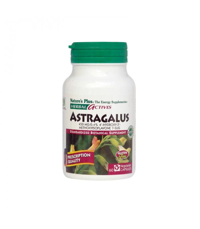 NATURE΄S PLUS Astragalus 450 mg - 60caps