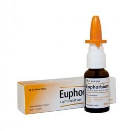 HEEL Euphorbium- Compositum SN Nasal Spray - 20ml