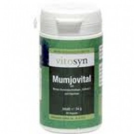 METAPHARM Vitosyn Mumjovital 60caps