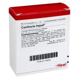 HEEL Cantharis Injeel 10 Amps