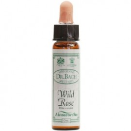AINSWORTHS BACH WILD ROSE 10ML