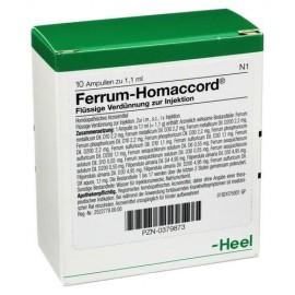 HEEL Ferrum -Homaccord Inj 10Amps
