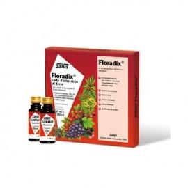 SALUS HAUS FLORADIX τονωτικό σιρόπι σε αμπούλες 10x20ml