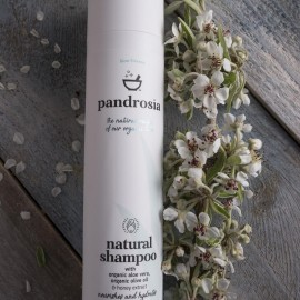 PANDROSIA Natural Shampoo - 250ml