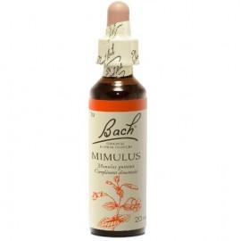 BACH Mimulus- Ανθοΐαμα Μίμουλος  No20 - 20ml