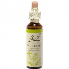 BACH Mustard- Ανθοΐαμα Σινάπι No21 -  20ml