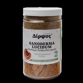 ΔΙΡΦΥΣ Ganoderma Lucidum - Πούδρα Μανιταριού 120gr