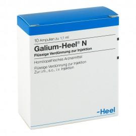 HEEL Galium 10 Amps